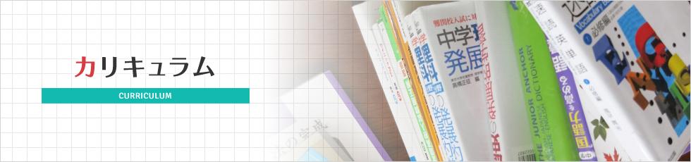 1-curriculum_03